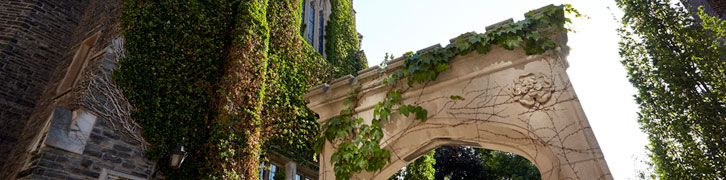 mcmaster arch